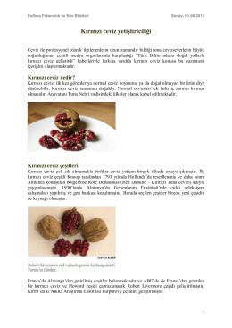 Kırmızı ceviz yetiştiriciliği - Esflora Fidancılık ve Süs Bitkileri