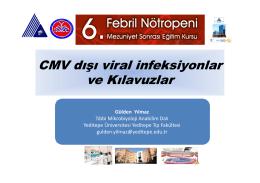 CMV dışı viral infeksiyonlar ve Kılavuzlar