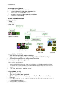ayxmaz/biyoloji Bitkiler Ortak Fiziksel Özellikleri 1
