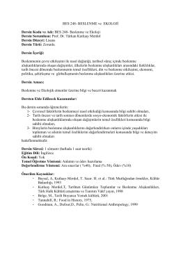 Prof. Dr. Türkan Kutluay Mer
