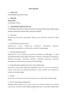 ÜRÜN BİLGİSİ 1. ÜRÜN ADI LEVOWORLD 500 mg Film Tablet 2