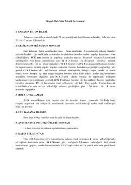 Kapalı Halı Saha Teknik Şartnamesi 1- SAHANIN