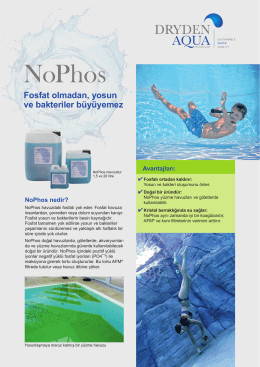 NoPhos - the Dryden Aqua Pools Website