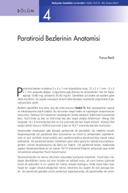 Bölüm 4 - Paratiroid Bezlerinin Anatomisi