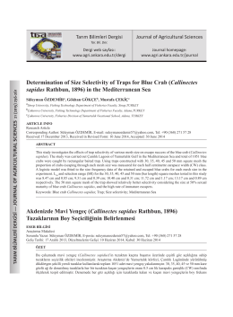 Determination of Size Selectivity of Traps for Blue Crab (Callinectes