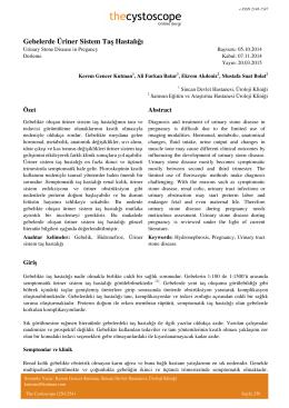Gebelerde Üriner Sistem Taş Hastalığı - Cystoscope E