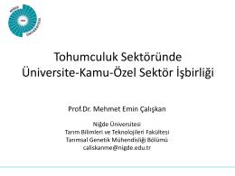 Prof. Dr. Mehmet Emin ÇALISKAN