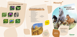 Mesutat x3 Kullanılacağı bitki ve yabancı otlar