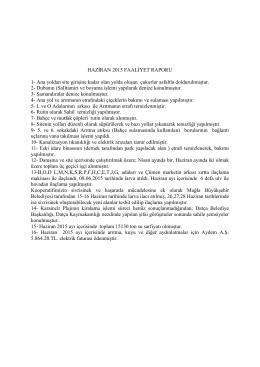 yayın 2015-14 haziran ayı faaliyet raporu