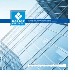 Kurumsal Yapı, Analitik ve Hızlı Çözümler Corporate Structure