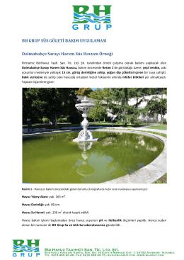 Dolmabahçe Sarayı Süs Havuzu Temizlik Raporu için tıklayınız