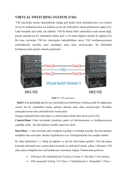 VIRTUAL SWITCHING SYSTEM (VSS)