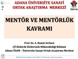 mentorlük nedir?