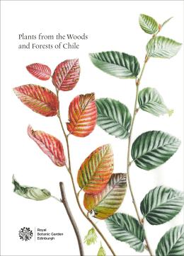 booklet - IŞIK GÜNER Botanical Art