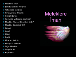 Meleklere İman - Tulip & and Rose