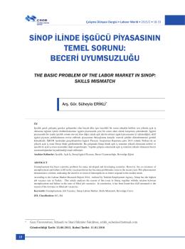sinop ilinde işgücü piyasasının temel sorunu: beceri uyumsuzluğu