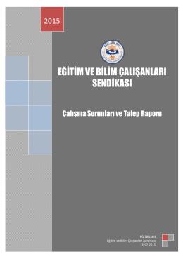 çalışma raporu 2015