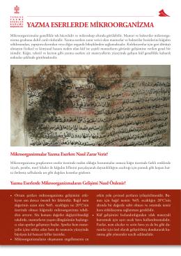 yazma eserlerde mikroorganizma - Türkiye Yazma Eserler Kurumu