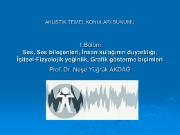 SES - Yarbis