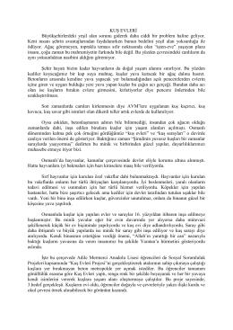Proje İçeriği - Adile Mermerci Anadolu Lisesi