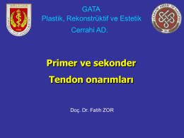 Primer ve sekonder Tendon onarımları