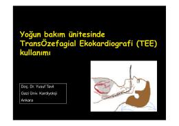 Yoğun bakım ünitesinde TransÖzefagial Ekokardiografi kullanımı