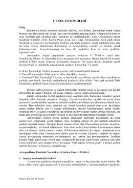 tıbbý entomolojý - UzmanVeteriner.Com.tr | Uzman Veteriner