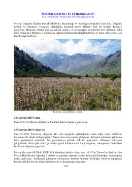 Medetsiz  (13-14 Haziran 2015)