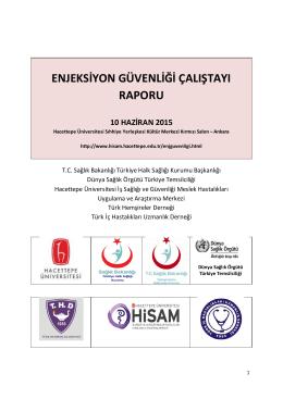 Çalıştay Raporu - HİSAM - Hacettepe Üniversitesi