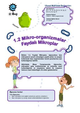 Bölüm 1.2, Faydalı Mikroplar, öğrencilere tüm mikropların - e-Bug