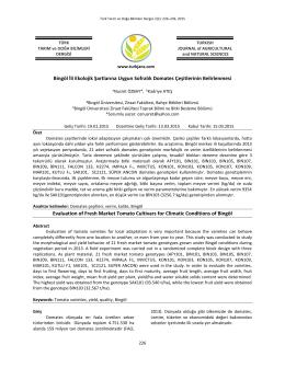 Bingöl İli Ekolojik Şartlarına Uygun Sofralık Domates Çeşitlerinin