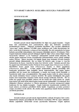 yuvadakđ yabancı: kuşlarda kuluçka parazđtlerđ