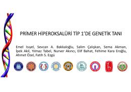 Primer Hiperoksalüri Tip 1`De Genetik Tanı