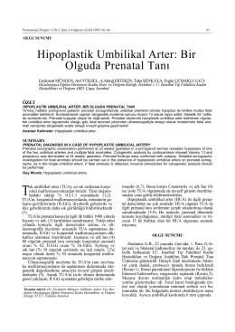 Hipoplastik Umbilikal Arter: Bir Olguda Prenatal Tanı