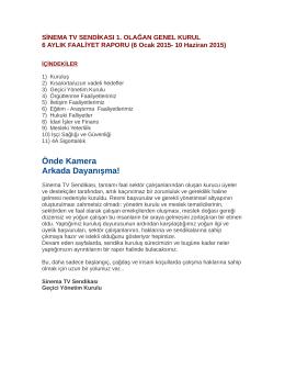 Sinema Televizyon Sendikası Raporu PDF olarak indir