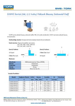 S1095 Serisi (NK, 3/2 Yollu) Yüksek Basınç Solenoid Valf