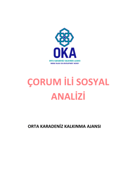 Çorum Sosyal Analiz Raporu - Orta Karadeniz Kalkınma Ajansı