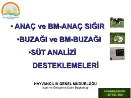 Kemalettin Özcan AS-BUZ DESTEKLEMELERİ-ANTALYA-2015