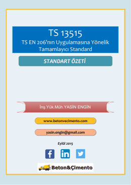 ts 13515: özet değerlendirme