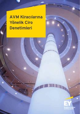 Usulsuzluk AVM - Ernst & Young