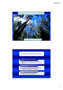 MBG 112 Biyoloji II Ders 12-1