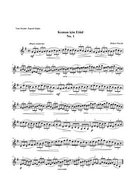 Robert Pracht - Keman için Çalışmalık No. 1.mus