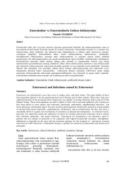 Enterokoklar ve Enterokoklarla Gelisen Infeksiyonlar