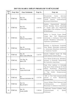 2015 yılı kabul edilen projeler ve bütçeleri