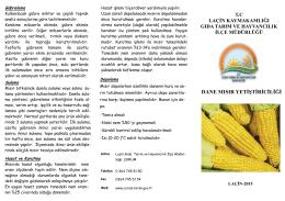 dane mısır yetiştiriciliği - Çorum İl Gıda Tarım ve Hayvancılık