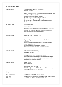 PROFESYONEL İŞ TECRÜBESİ 03.2013-09.2014 WALL