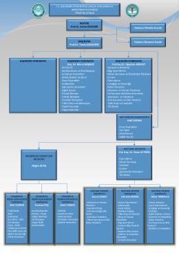 Hastane Yönetim Şeması - Balıkesir Üniversitesi Sağlık Uygulama