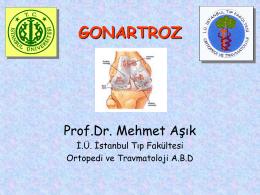 GONARTROZ - Prof. Dr. Mehmet AŞIK
