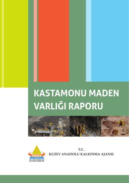 kastamonu maden varlığı raporu