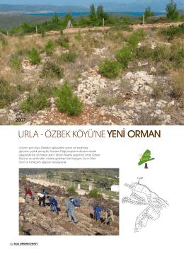 Urla Özbek Ağaçlandırma Projesi